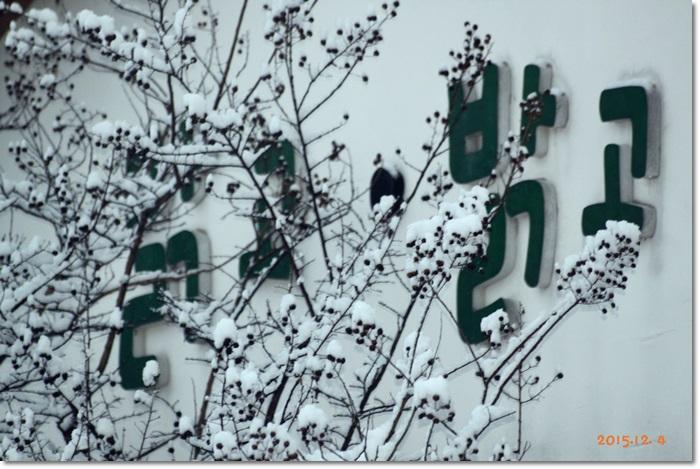 꾸미기_IMG_0125.JPG