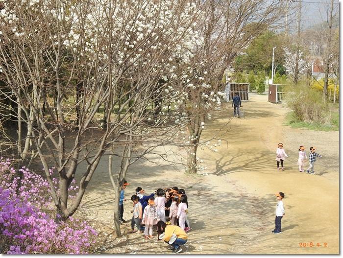 꾸미기_DSCN3000.JPG
