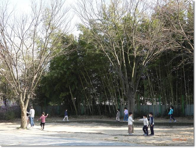 [꾸미기]DSCN1300.JPG