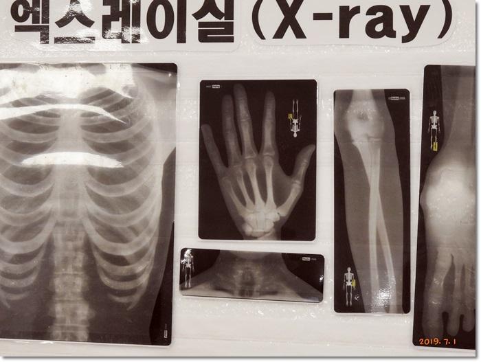 꾸미기_DSCN5090.JPG