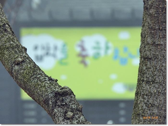 꾸미기_DSCN0050.JPG